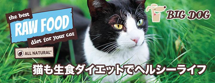 ビッグドッグ冷凍生食(猫用)